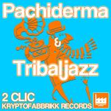 Pachiderma & Tribaljazz by 2clic mp3 download