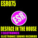 7 Electronics - Desface in the House
