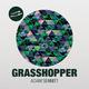 Adam Sennitt Grasshopper