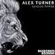 Alex Turner - Analog Power