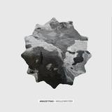 Wellenreiter by Amazetrax mp3 download