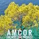 Amcor - The Nerezine Project