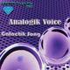 Analogik Voice Galactik song