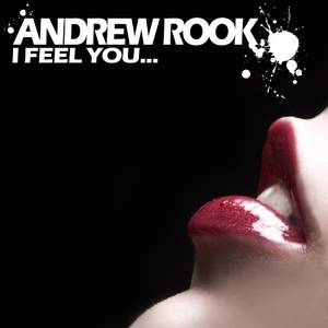 Andrew Rook - I Feel You (Moproduction)