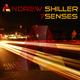 Andrew Shiller 7 Senses