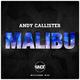 Andy Callister Malibu