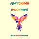Antoninii Endorphine