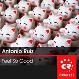Feel so Good by Antonio Ruiz Feat. Mary J. mp3 download