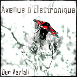 Avenue d'Electronique - Der Verfall (shilf-music)