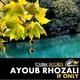 Ayoub Rhozali If Only