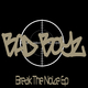 Bad Boyz Break the Noize