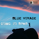 Blue Voyage Going to Bpms