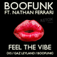Boofunk ft. Nathan Ferrari Feel the Vibe (Remixes)