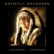 Brijetly Bhushann Chumbak Chumbak