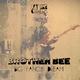 Brother Bee Big Fancy Dream