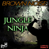 Jungle Ninja by Brown Noise mp3 download