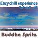 Buddha Spritz Easy Chill Experience, Vol. 2