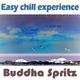 Buddha Spritz Easy Chill Experience