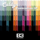 Caldyn Combinations EP