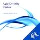 Caramel Brain Ideas - Acid Divinity