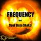 Carbon Based United & Soul Sista Shakti Frequency feat. Soul Sista Shakti