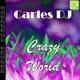 Carles DJ - Crazy World