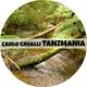 Carlo Cavalli Tanzmania