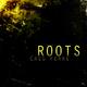 Cass Ferre Roots