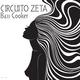 Circuito Zeta Bass Cooker