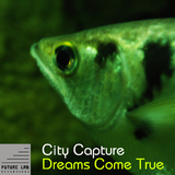 Dreams Come True by City Capture mp3 download