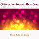 Collective Sound Members - Feels Like so Long