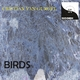 Cristian van Gurgel Birds