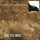 Cristian van Gurgel Ok to Bee