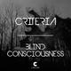 Criteria Blind Consciousness