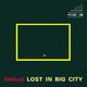 D.N.Acid Lost in Big City