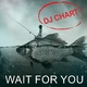 DJ-Chart Wait for You