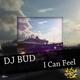 DJ Bud I Can Feel