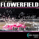 DJ Ex-One Presents Flowerfield For the Moment