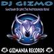 DJ Gizmo Sanctuary of Love(The Partycrushers Refix)