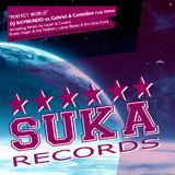 Perfect World by DJ Raymundo vs. Gabriel & Castellon feat. Polina mp3 download