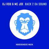 Back 2 da Sound by DJ Rob & MC Joe mp3 download