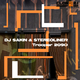 DJ Sakin & Stereoliner Trooper 2090