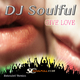 DJ Soulful Give Love(Extended Version)