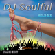 DJ Soulful Hold Me(Radio Edit)