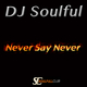 DJ Soulful - Never Say Never
