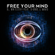 DJ Whitestar feat. Shondell Mims - Free Your Mind