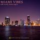 Daft Werk Miami Vibes