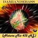 Damiandebass Silence(Nature Mix 432 Hz)