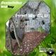 Damiandebass - Wild Boys(Forest Mix 432 Hz)