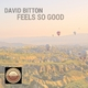 David Bitton Feels so Good